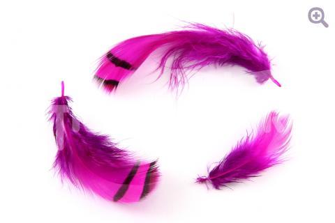 Перо фазана 5-9см,  цвет: фуксия, 5шт