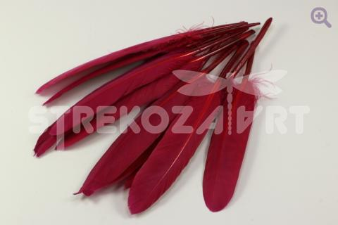 Перо гусиное (прямое) 10-15см, цвет: вишневый