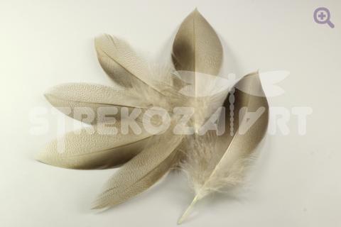 Перо дикой утки 12-16см, цвет: натуральный