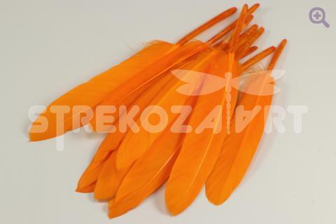 Перо гусиное (прямое) 10-15см, цвет: оранжевый