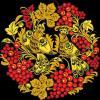 Аватар пользователя Shatova-1976@inbox.ru